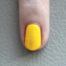 popexotic-yr-citroen-02