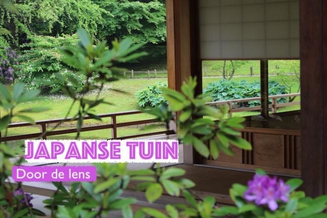 uitje naar Japanse tuin - 01