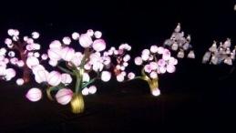 China Lights winter 2014-15 prachtig licht spektakel - bloemen