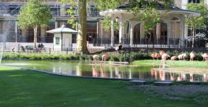 Zoo Antwerpen - vernieuwde Flamingo plein, nostalgie, Flamingo's