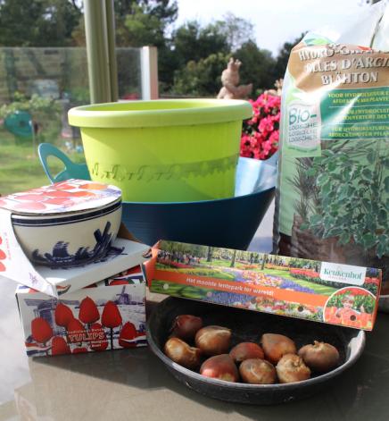 potten, bollen, argex en potgrond. ingrediënten voor een tulpen-lasagne.png
