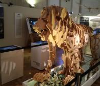 da-vinci-museum-manquette-leeuw