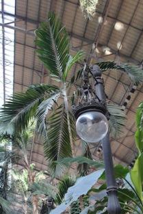 station-atocha-tropische-binnentuin