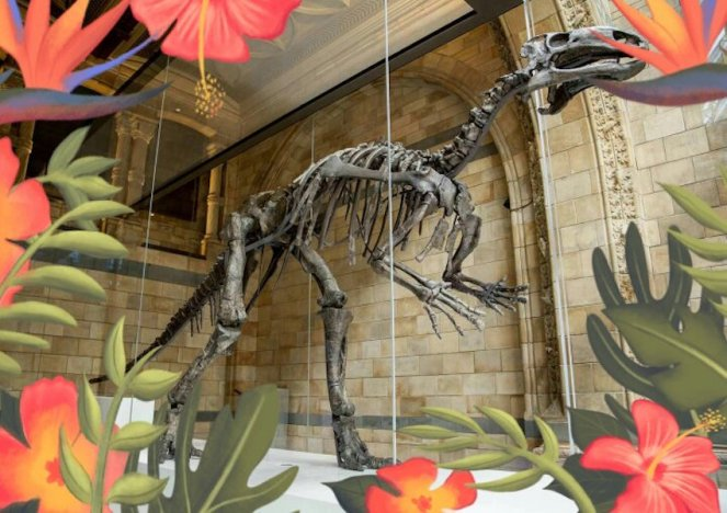 Op safari in het natuurhistorisch museum londen © The Trustees of the Natural History Museum, London [2017]. All rights reserved.jpeg