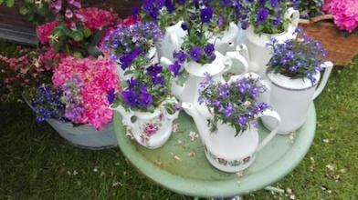 Tuindagen Beervelde - bloemen thee kransje