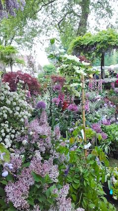Tuindagen Beervelde - sfeefvol bloemenperk